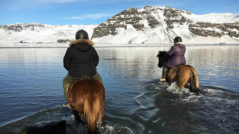 Horse Riding | Horseback | Eyjafjallajökull | Lake | Black Beach | River | Eyjafjöll | Horseback | Farm | Hidden Iceland | Photo Skálakot | Feature