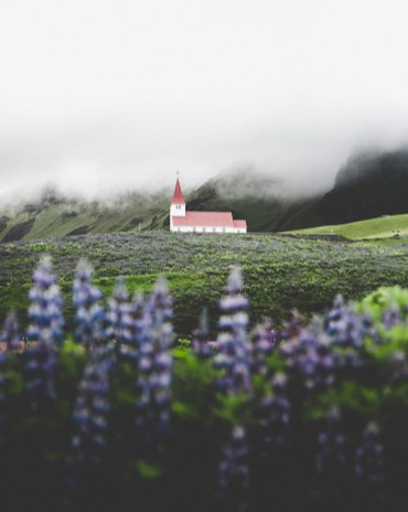 Vík Church in Summer Lupin Field | Hidden Iceland | Photo Norris Niman
