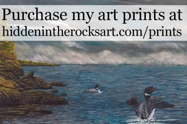 Purchase Hidden In The Rocks Art Prints Online