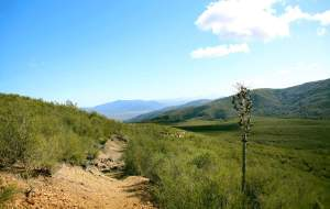 Hike Barker Valley Trail, one of Palomar Mountains most scenic trails with a waterfall below!