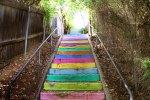 Color Trails