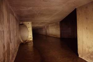 Explore the Half Moon Tunnel, one of San Diego's best underground tunnels!