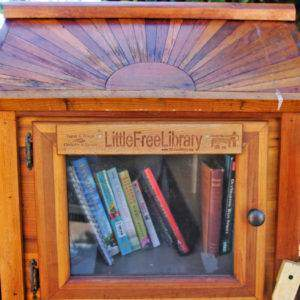 Check the hundreds of Little Free Libraries throughout each neighborhood of San Diego!