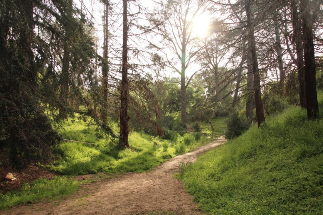 Visitor's Guide: Balboa Park