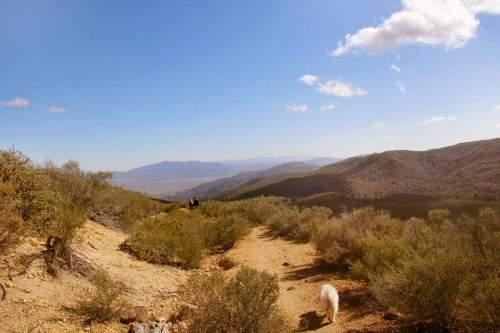 barker valley