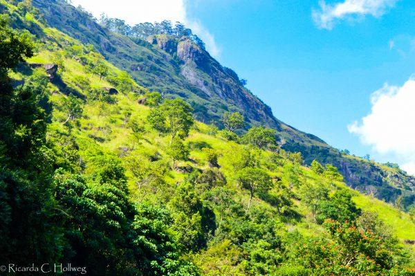 Berg Sri Lanka