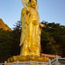 Buddha in einer Tempelanlage in Südkorea