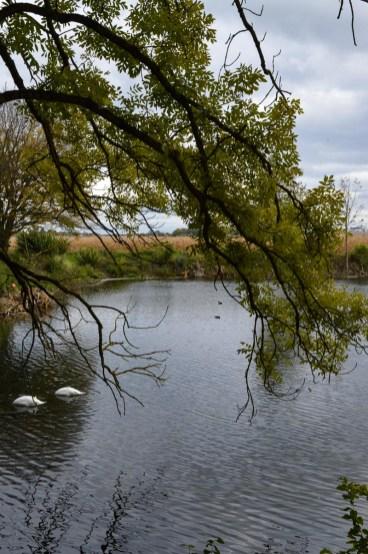 Abwasserbecken München