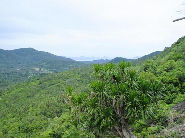 Landschaft in Koh Samui