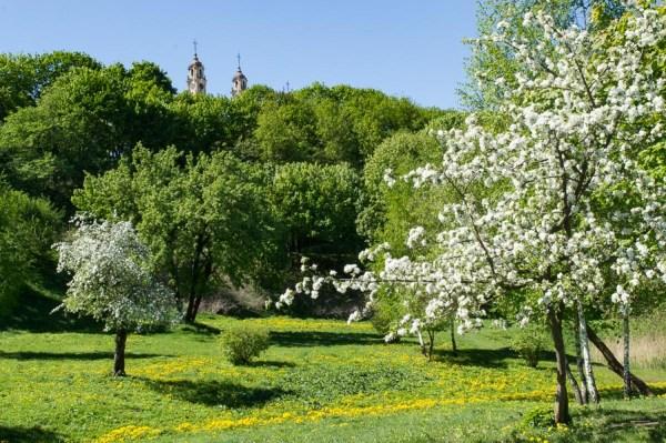 Kudry Park Vilnius