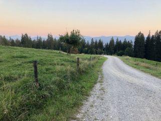 Panorama am Taubenberg