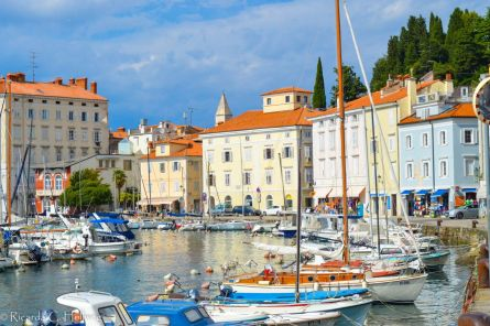 Picturesque Harbour of Piran