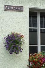 Window in Stein am Rhein