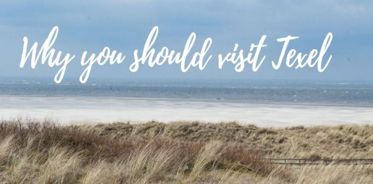 Dutch North Sea: Why you should visit Texel