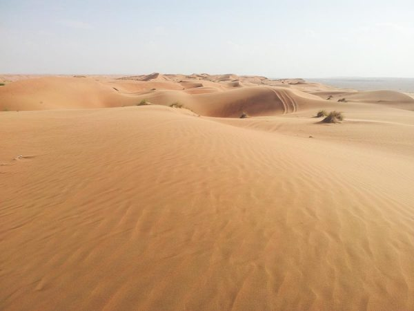 Wahiba Sands in Oman