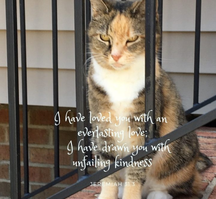 Relentless Love: God, Ms. Kitty and Me