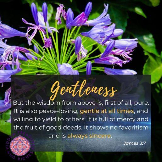 Gentleness is not weakness but strength under control.