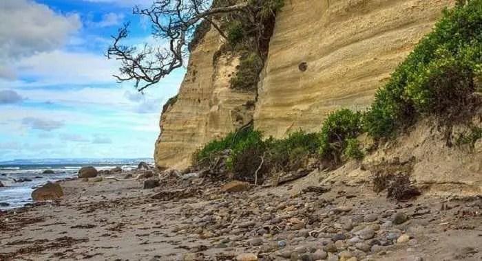 В Нова Зеландия, свлачище на плажа открива множество човешки кости