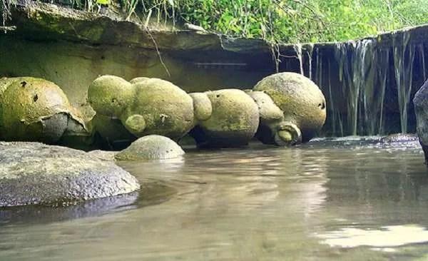 Тровантите – невероятните живи камъни, които се размножават