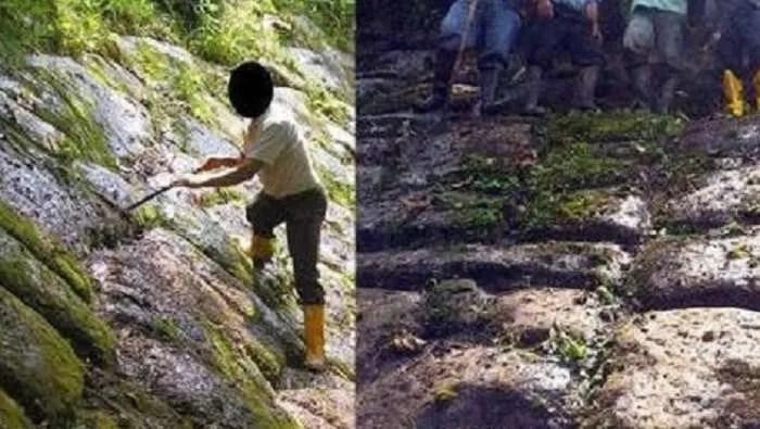 Защо археолозите не желаят да проучат Градът на гигантите в Еквадор?