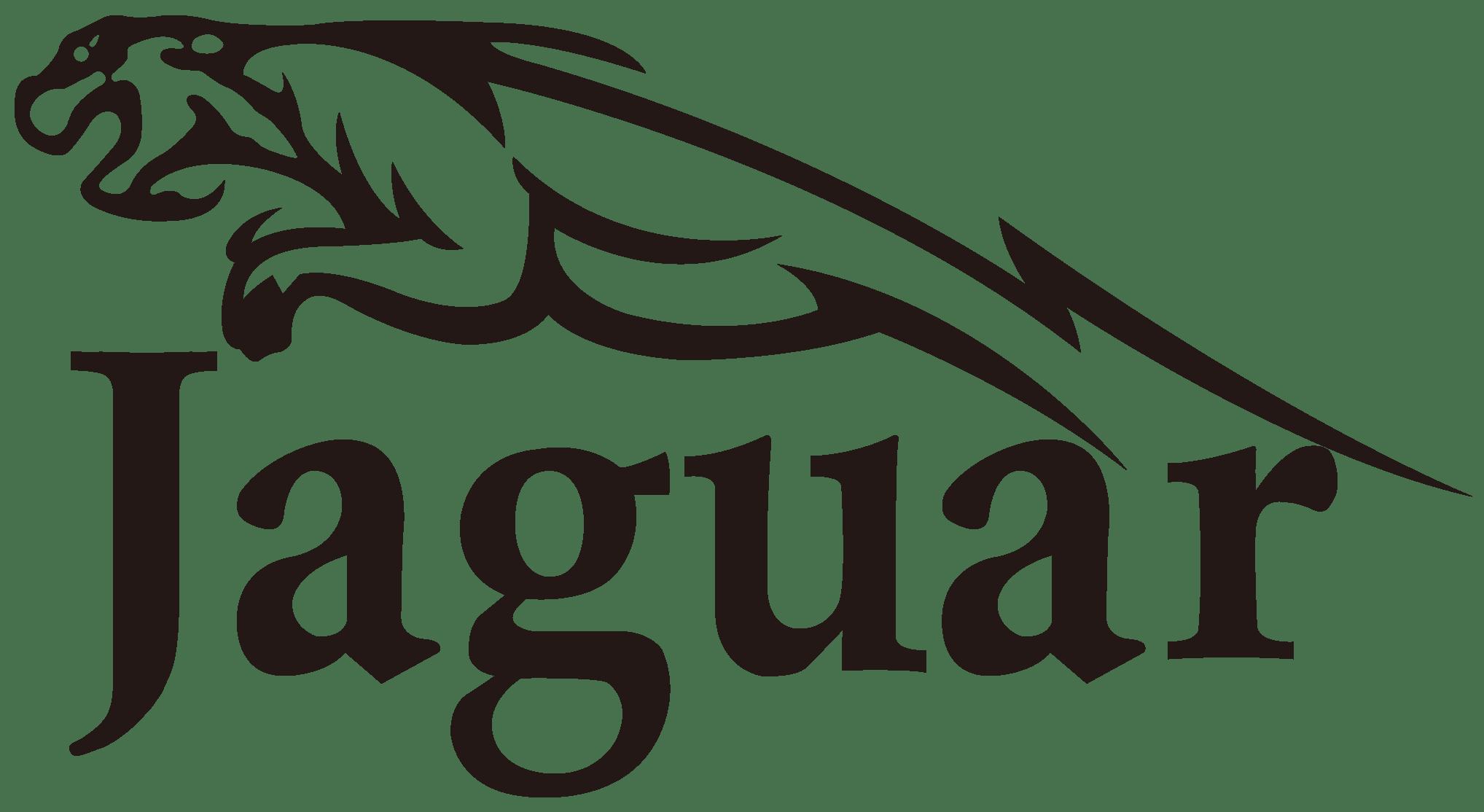 Sal D Jaguar
