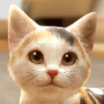 with My CAT APK Mod Download for android
