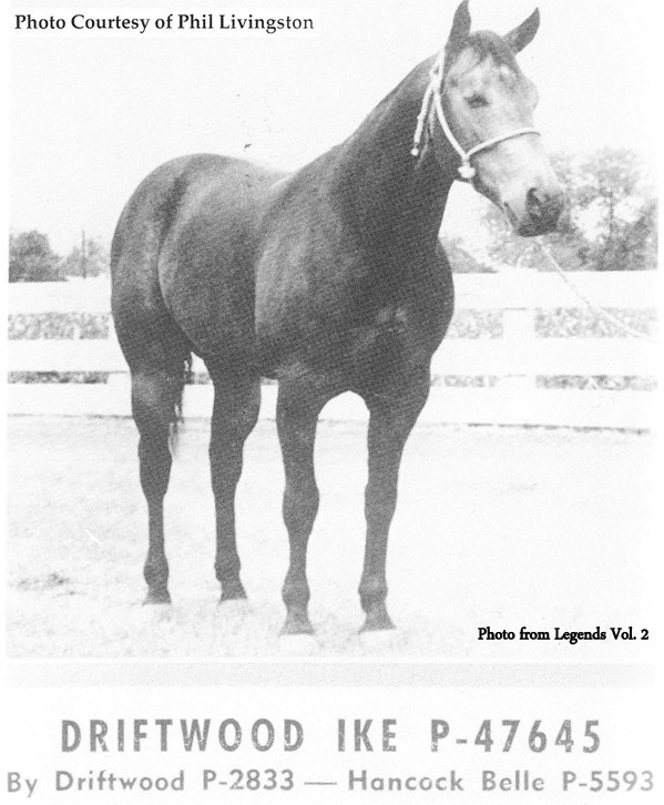Driftwood Ike #1