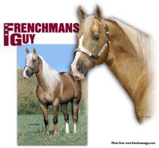 Frenchmans Guy #1