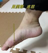 足関節 底屈