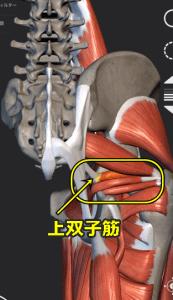 image5 - コピー (3)