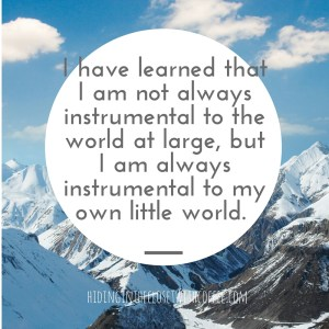 I have learned that, alas, I am not always instrumental to the world at large, but I am always instrumental to my own little world.