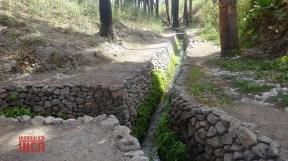....los drenes colectores están ubicados a ambas margenes del dren principal...