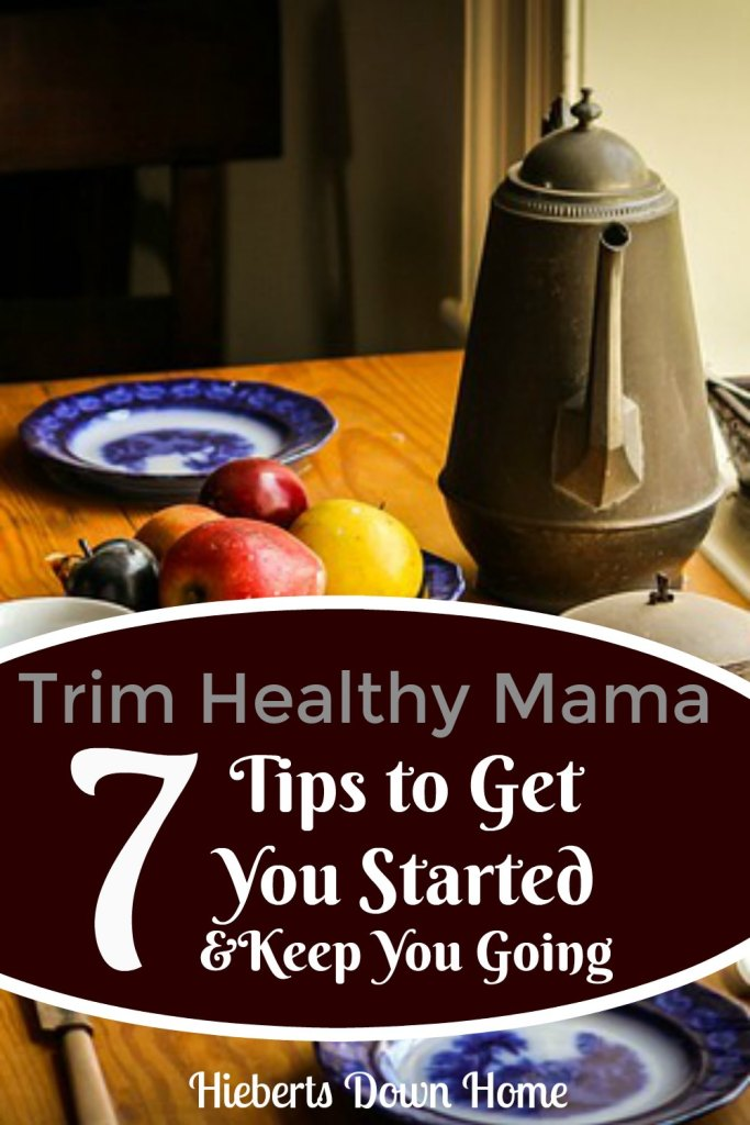 Trim Healthy Mama 7 Tips to get you started and keep you going