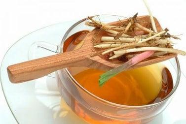 usos medicinales de la grama comun