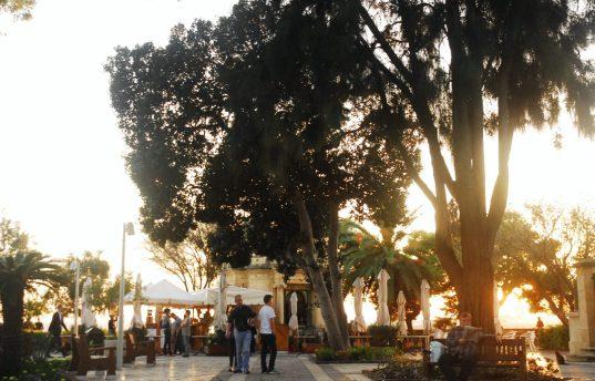 Parkanlage im Licht der untergehenden Sonne
