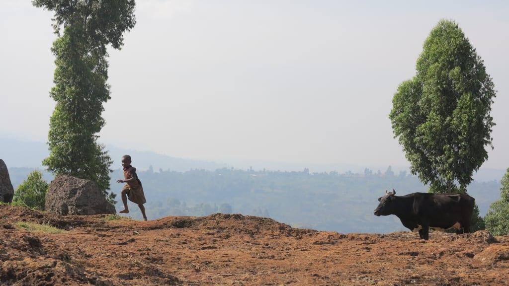 Berlandschaft bei Sipi in Uganda