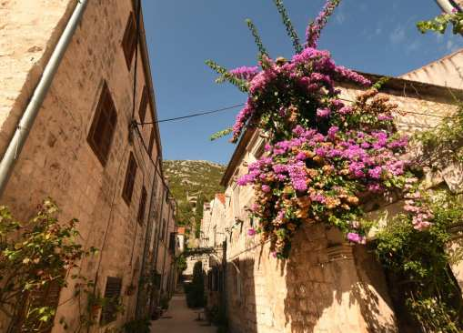 Gasse mit Blumen und Natursteinhäusern