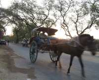 Pferdedroschke in Myanmar