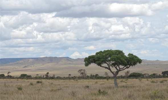Der Süden Madagaskars