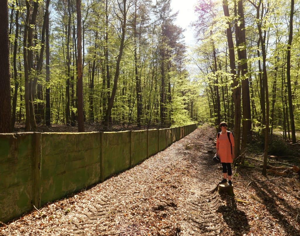 Mauer in einem Wald, davor Frau mit orangefarbenem Kleid