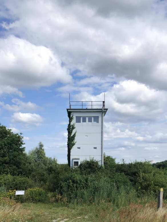 Weißer Turm über grünem Wald