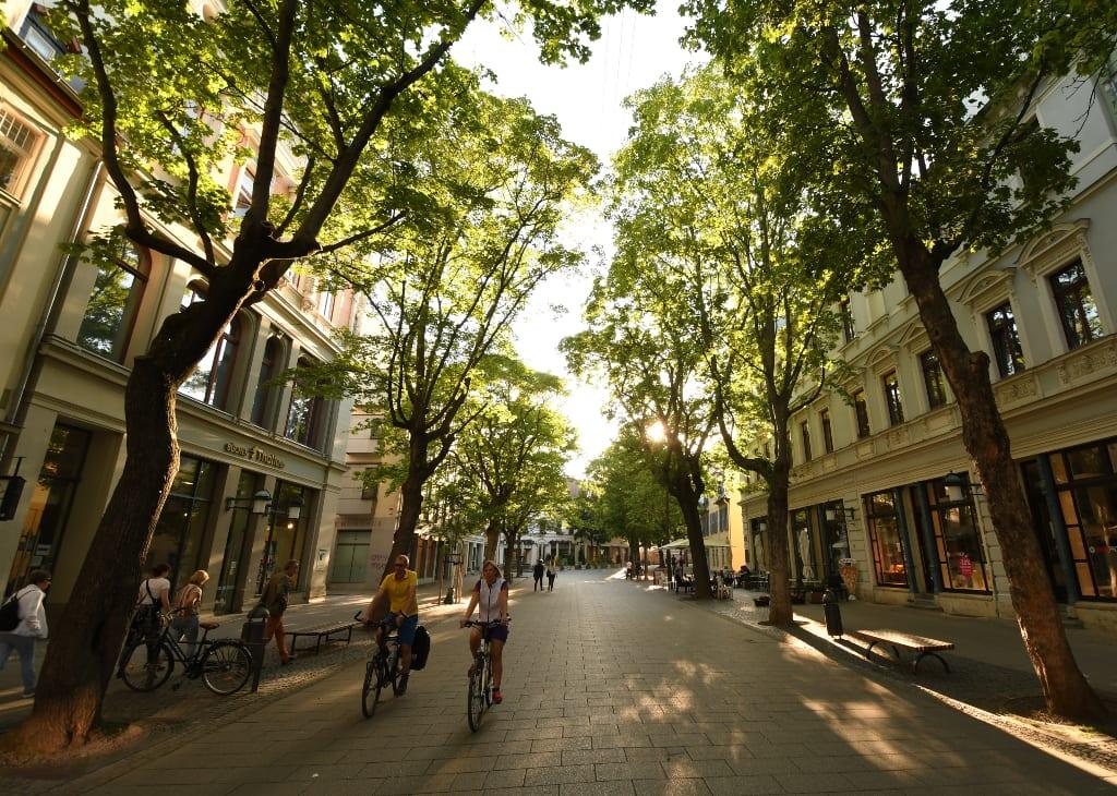 Straße einer Stadt mit Bäumen