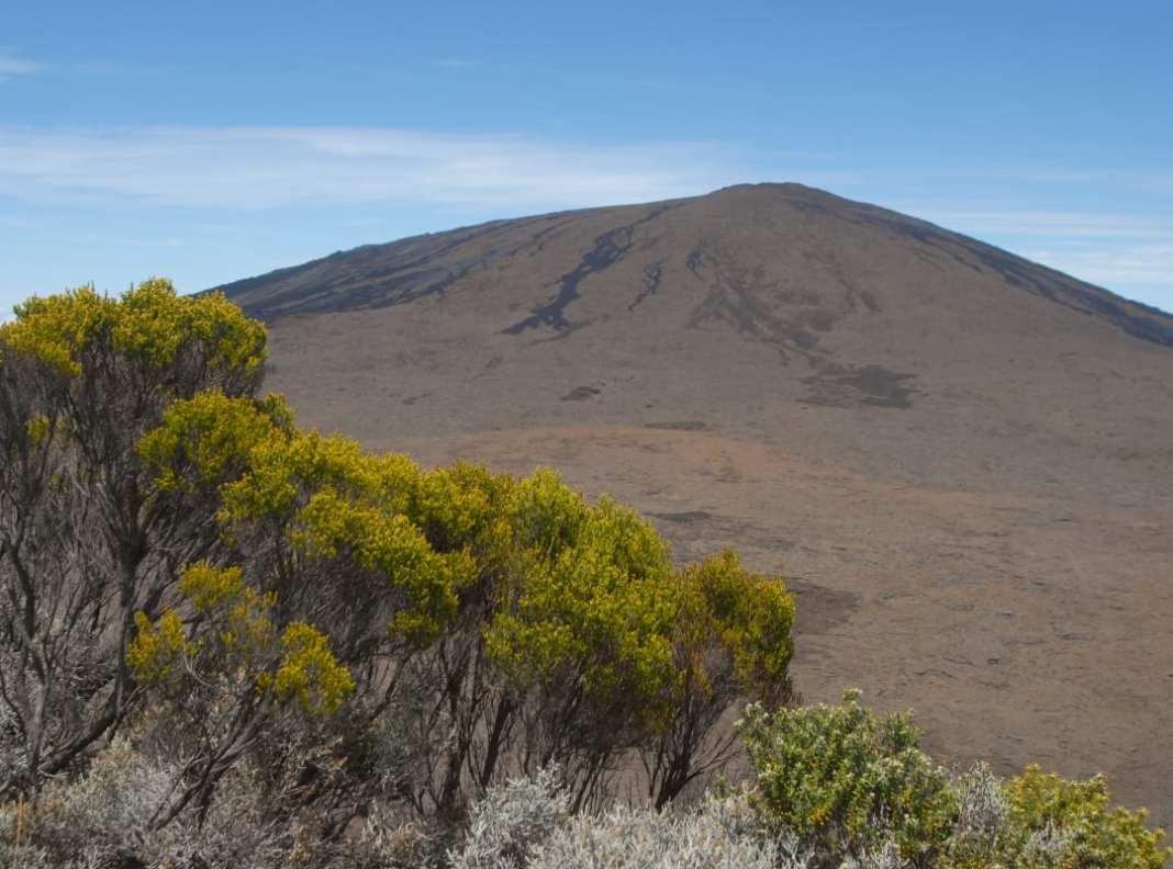Rauer Vulkanberg, davor Vegetation