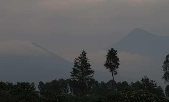 Vernebelte tropische Bergwelt