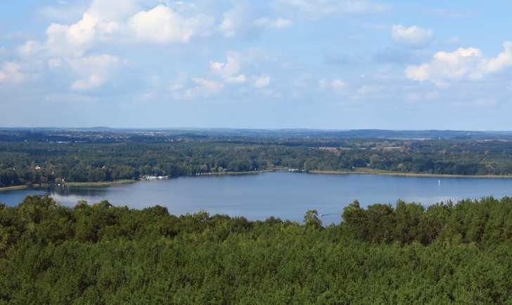 Blick über einen See in flacher Waldlandschaft