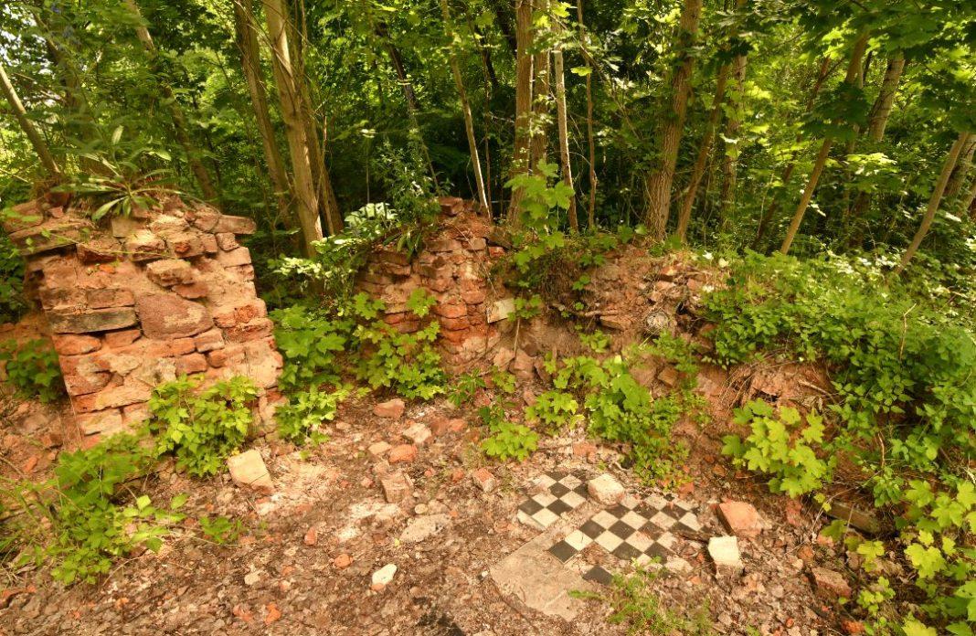 Kachelboden einer Häuserruine im Wald