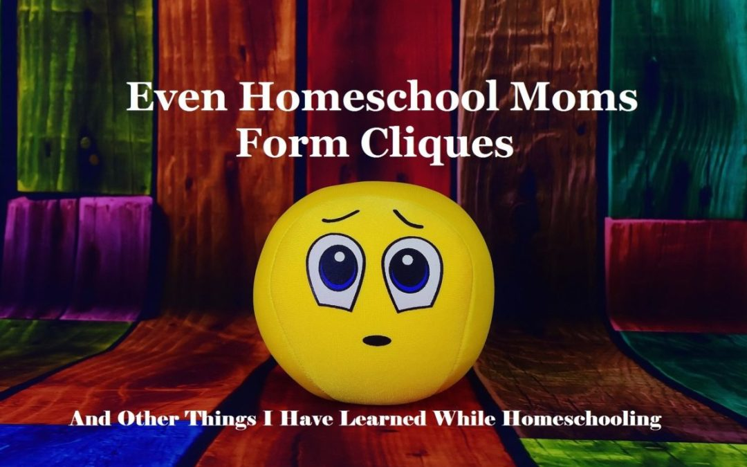 Even Homeschool Moms Form Cliques And Other Things I Have Learned While Homeschooling