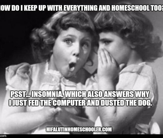 Homeschool Insomnia Meme