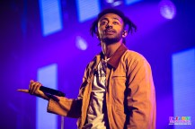 AMINE Groovin The Moo Adelaide - Adam Schilling (5)