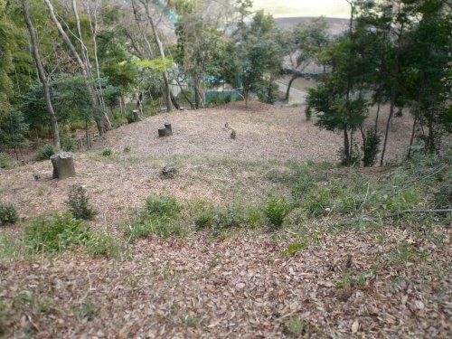 滝の城址公園 三の丸の崖